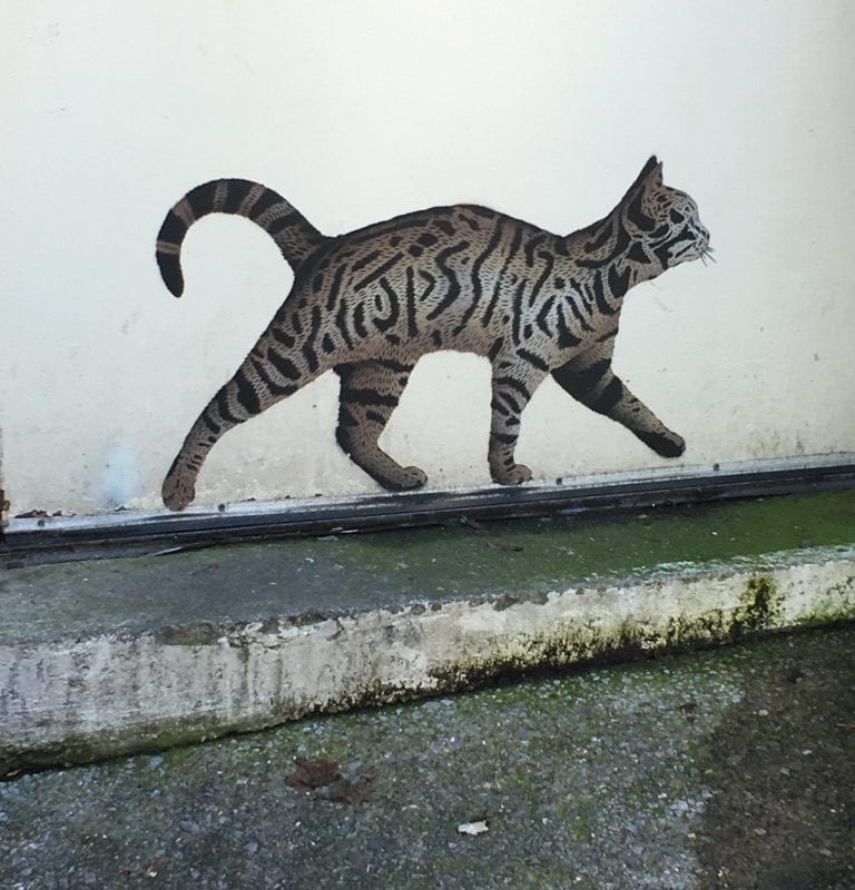 Street art JPS le chat Bristol